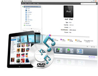 put pictures on ipad, ipad manager, ipad managing software